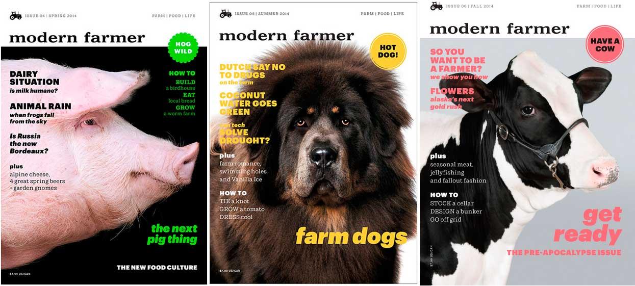 Ejemplos de las portadas de la revista